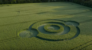 The first crop circle of 2019 has just appeared in England 1