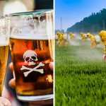 beer1 150x150 - 19 of 20 Beers in the World Contains Monsanto Bayer Carcinogenic Ingredient - See List