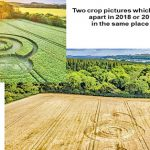 gj 150x150 - The first crop circle of 2019 has just appeared in England