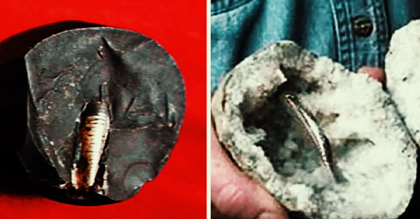 """truert - """"Lanzhou screw"""" from China - Ring of unknown material of 200 million years that is in Geode"""