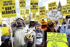 France Becomes The First Country In Europe To Ban All Pesticides Associated With Bee Deaths 3
