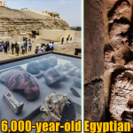 6000 year old Egyptian Tomb 150x150 - New Discovered 6,000-year-old Egyptian Tomb Contains Unusual Mummies