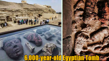 6000 year old Egyptian Tomb 364x205 - New Discovered 6,000-year-old Egyptian Tomb Contains Unusual Mummies