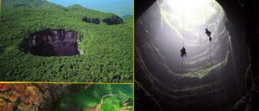 SARISARINAMA 364x156 - Cerro Sarisariñama: An enigmatic hole that leads to a totally unknown world