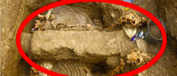 Amazing Archaeological Discoveries 364x156 - Amazing Archaeological Discoveries